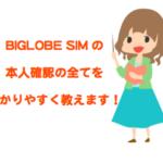 BIGLOBEモバイルの本人確認書類の身分証明って何がいる?格安SIM初心者でもアップロードは簡単にできるの?
