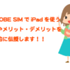 BIGLOBE SIMはiPad (mini・Airなど)と相性抜群!設定方法やお得に利用する方法を伝授!!